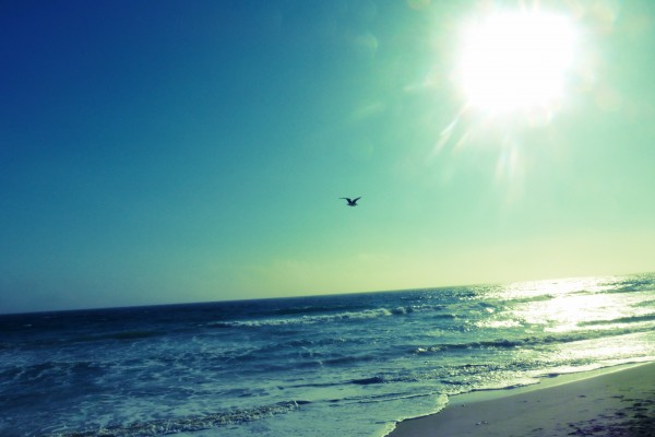 Malibu Beach Sunset Photography Summer Time