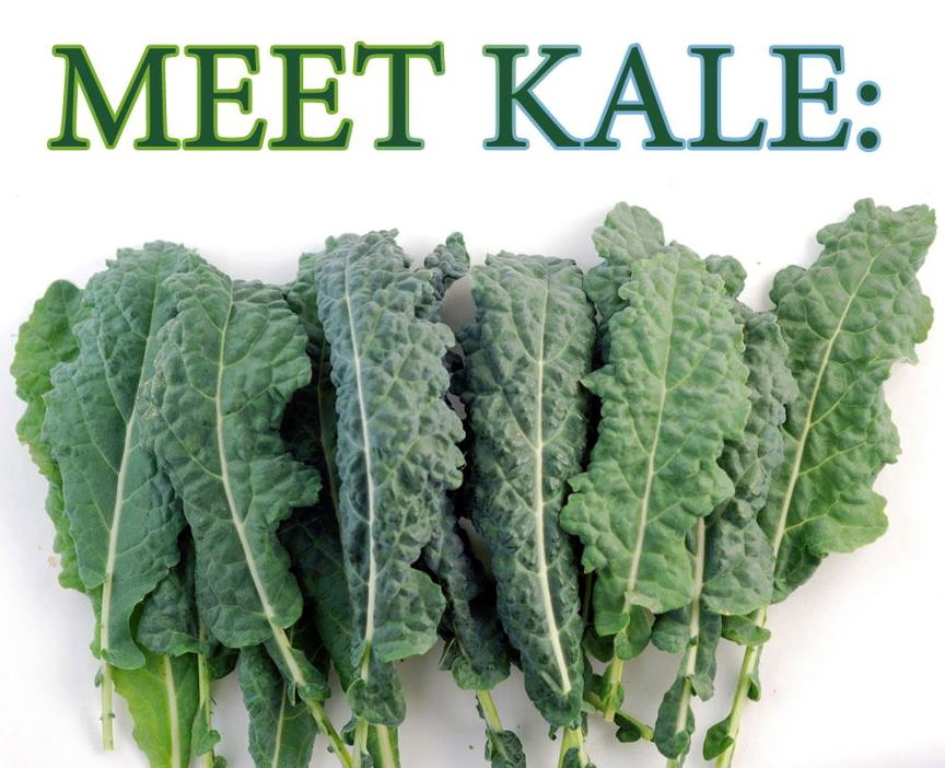 Kale the trendiest food addiction for Proud Green Lovers