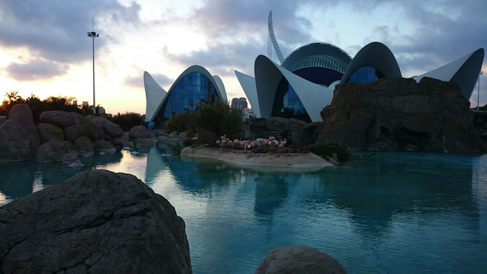 Oceanograpfic Aquarium in Valencia Spain Travel Blogger