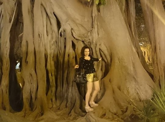 Darling Fashion Tree with Upside Down Roots Europe Travel Blogger